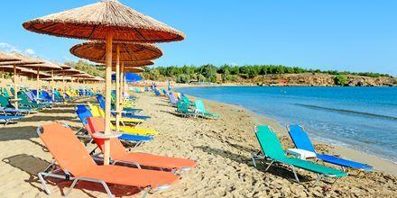 Strand vid hotell Triton i Agii Apostoli på Kreta, Grekland.