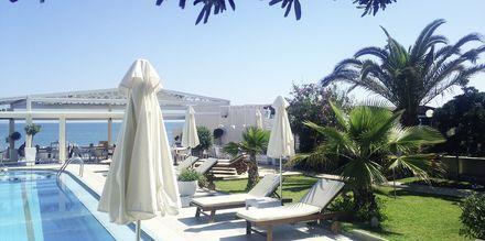 Poolområdet på hotell Tropicana, Kato Stalos, Kreta.