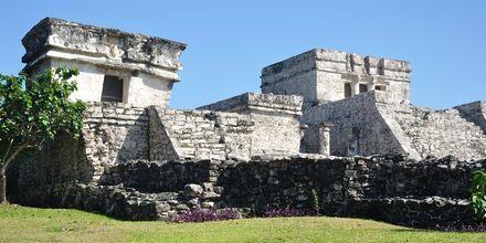 Ruinerna i Tulum på Rivera Maya, Mexiko.
