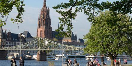Promenera längs floden i Frankfurt
