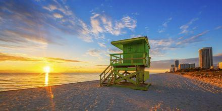 Soluppgång på stranden i Miami.