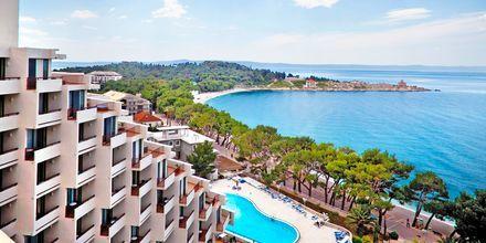 Hotell Valamar Meteor på Makarska rivieran, Kroatien.