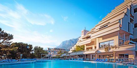 Poolområdet på hotell Meteor på Makarska rivieran, Kroatien.