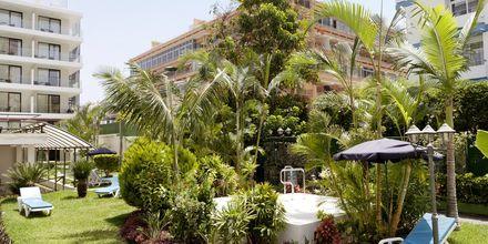 Jacuzzi på hotell Valle Mar i Puerto de la Cruz på Teneriffa.