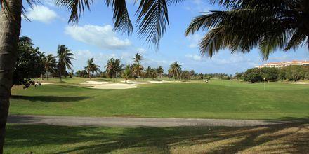 Varaderos golfbana.