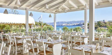 Bufférestaurangen Thalatta på hotell Vasia Ormos i Agios Nikolaos på Kreta, Grekland.