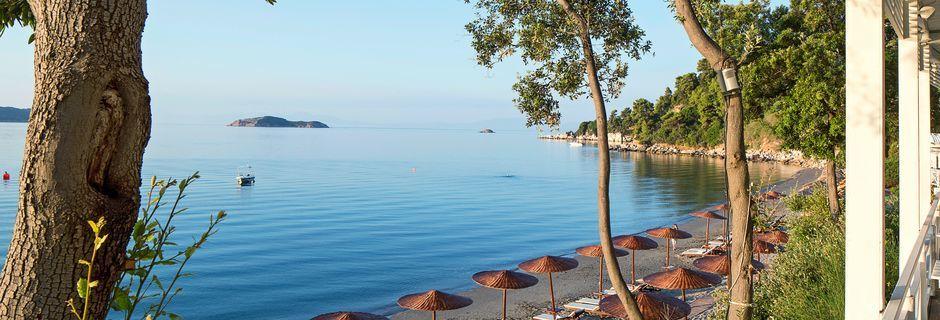 Stranden vid hotell Kassandra Bay i Vasilias på Skiathos.