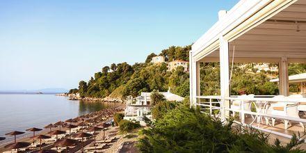 Hotell Kassandra Bay i Vasilias på Skiathos.