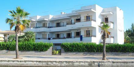 Hotell Venecia i Alcudia på Mallorca, Spanien.
