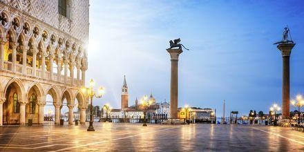 Markusplatsen i Venedig.