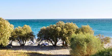 Stranden vid hotell Veronica Beach i Votsalakia på Samos, Grekland.