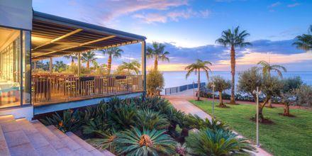 Utsikt från VIDAMAR Resorts Madeira, Portugal.