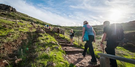 På Madeira finns allt från lättare levadavandringar till lite tuffare turer.