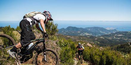 Cykling på Madeira.