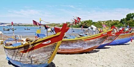 Fiskebåtar i Phan Thiet i Vietnam.