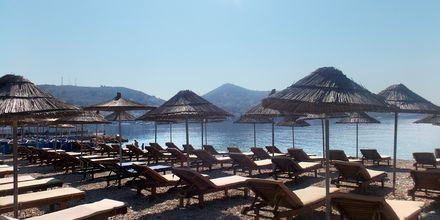 Stranden vid hotell Vila Kalcuni - Saranda, Albanien.