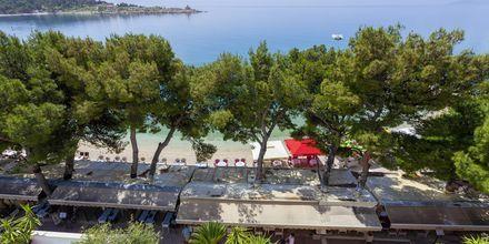 Utsikt över stranden från Villa Ankora på Makarska Rivieran i Kroatien.