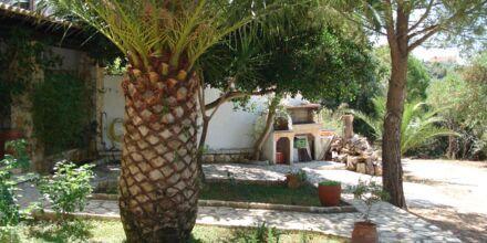Hotell Villa Heivi i Sivota, Grekland.