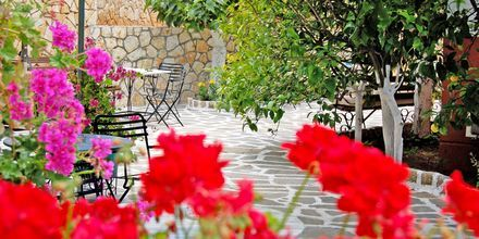 Hotell Villa Marie i Sivota, Grekland.