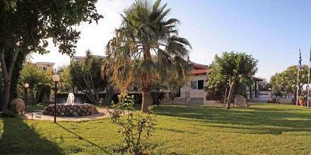 Grönområden på Villa Vicky i utkanten av Hersonissos, Kreta.