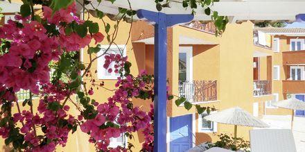 Trädgård på hotell Vliho Bay Boutique Hotel på Lefkas, Grekland.