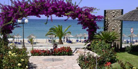 Stranden vid hotell Haris i Vrachos, Grekland.