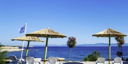 Stranden vid Waterman Beach Village Bungalow, Brac, Kroatien.