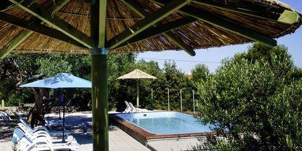Pool på Waterman Beach Village Bungalow, Brac, Kroatien.