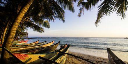 Mirissa Beach, cirka 6 kilometer från Weligama Bay i Sri Lanka.