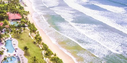 Stranden utanför Marriott Resort Weligama Bay, Sri Lanka.