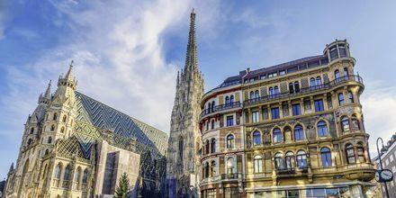 Stefansdomen, Wiens katolska domkyrka, är ett viktigt landmärke i staden.
