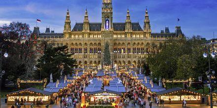 Julmarknad i Wien är poppis bland människor från hela världen.