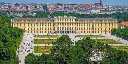 Schönbrunn slott är det pampigaste slottet i Wien.