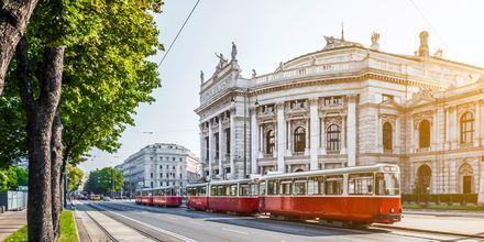 Spårvagn i Wien, Österrike.
