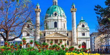 Karlskirche är en ståtlig kyrka i Wien från barock-tiden.