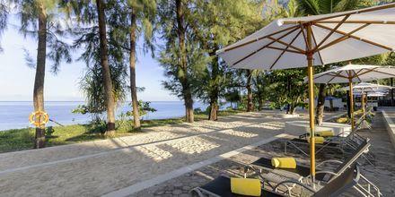 Stranden vid hotell X10 Khao Lak, Thailand.