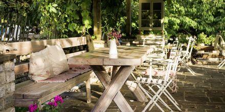 Lunchstopp på ett av byns mysiga caféer, Zagoria i Grekland.