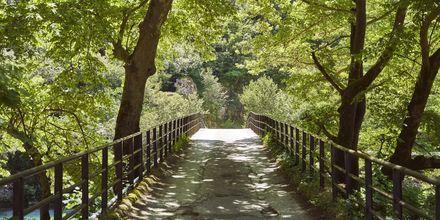 En av de 168 stenbroar som uppfördes under det Osmanska väldet på 1700- och 1800-talet.