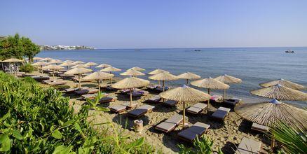 Stranden vid hotell Zephyros Beach Boutique, Kreta.
