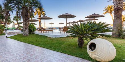 Trädgården på hotell Zephyros Beach Boutique, Kreta.